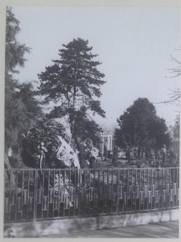 régi kerítés