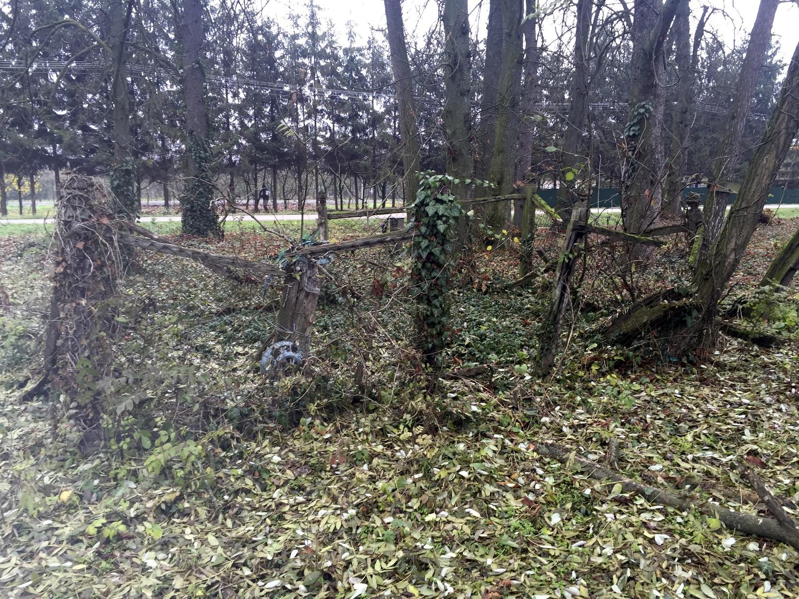 Kerítéssel lezárt családi temetkezésihely a kölcsei ótemetőben