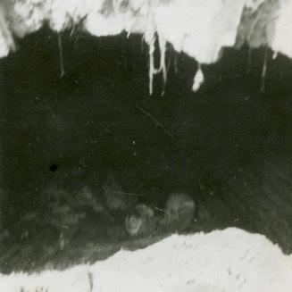 A Kölcsey család csontjai a régi kriptában